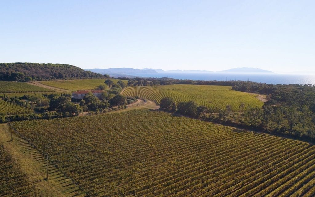 Bolgueri - Bolgheri Wine Tours
