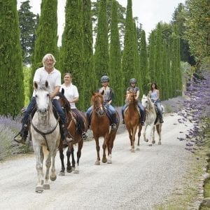 Dievole Cypress Line Avenue - Passeggiate a cavallo