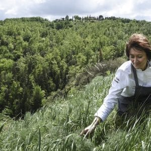 Monika Filipinska - Dievole Foraging Tour